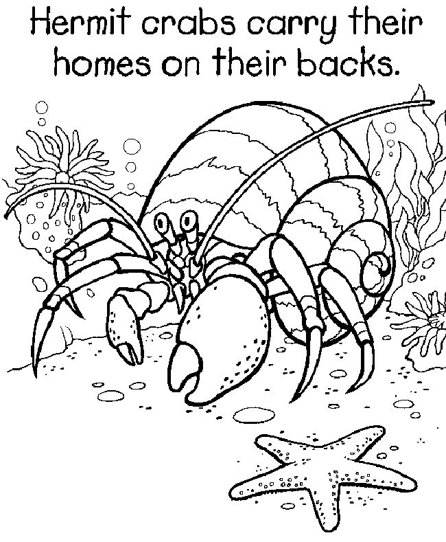 Free Coloring Pages Of 5th Grade Coloring Pages 5th Grade