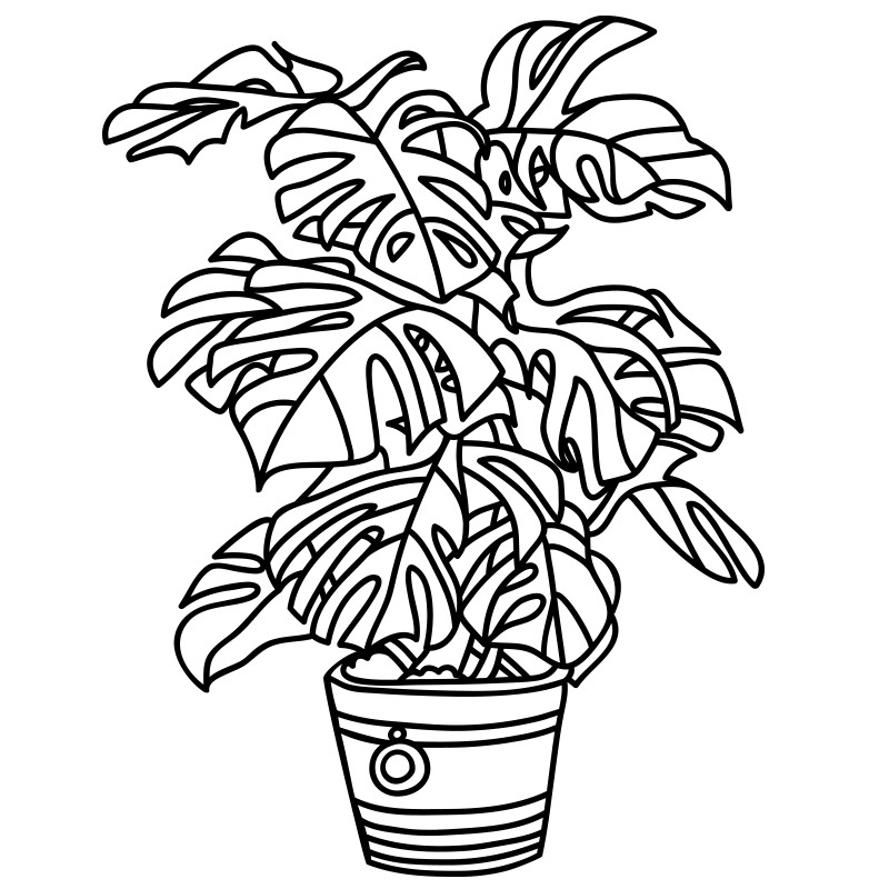 miami hurricanes coloring pages - photo#6