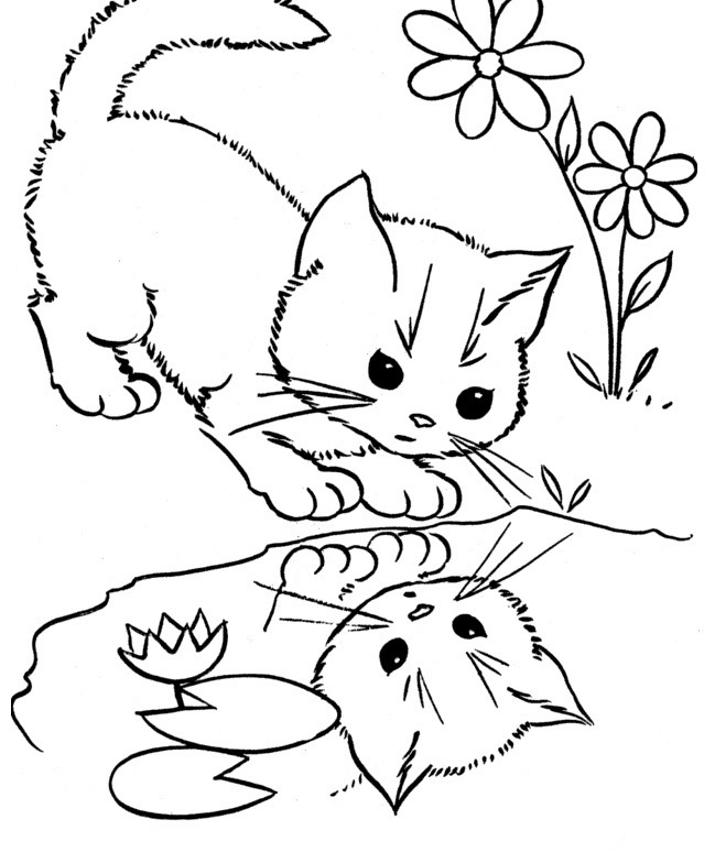 Cats See His Face In The Water Coloring Pages