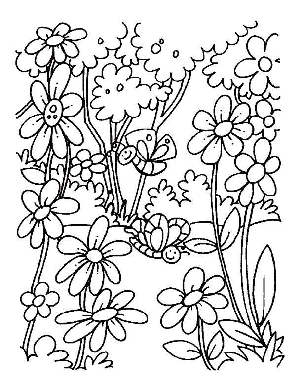 Alphabet Letter O Printable Activities  Coloring Pages