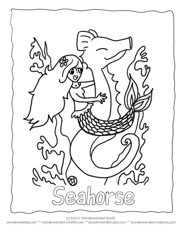 mermaid and seahorse coloring pages - photo#3
