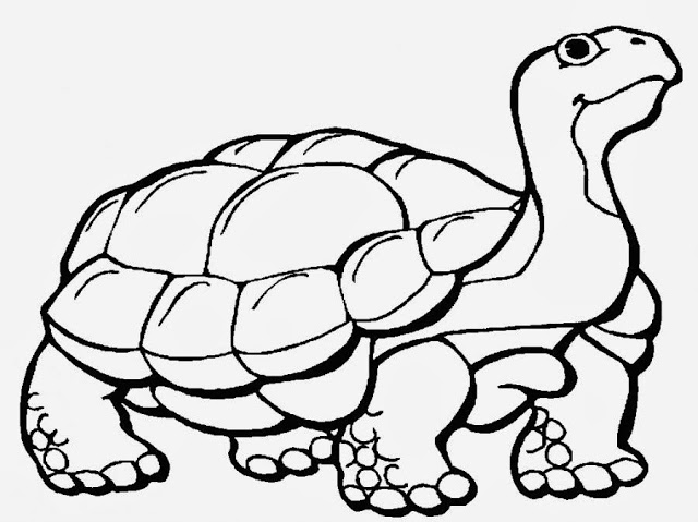 Alligator Snapping Turtle Coloring Pages Crokky Coloring Pages - AZ ...